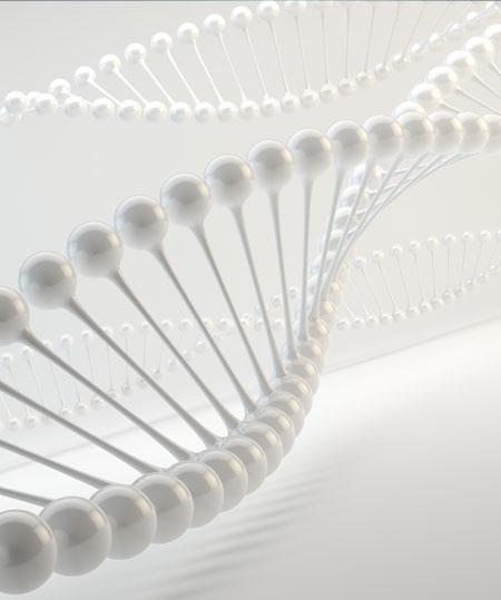 biotech-lyposmol-celulas-madre